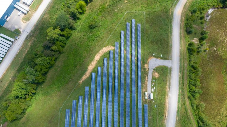 Waste of Space? The Agrivoltaic Opportunities Beneath a Solar Panel